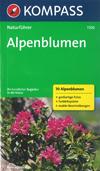 Alpenblumen (Kompass-Naturführer) title=